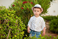 Little baby boy in a hat and shorts in the summer on a background of park costs about flower bush royalty free stock photo