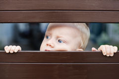 Little baby boy looking out through the fence. Portrait of abandoned little baby boy with staring blue eyes, sad and lonely face expression, looking out through Stock Photography