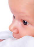 Little Baby Boy Looking Up Stock Photos