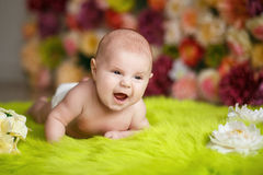 Little baby boy Royalty Free Stock Photo