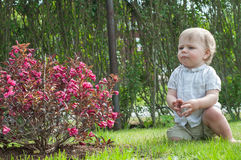 Little baby boy near pink bush Stock Photo