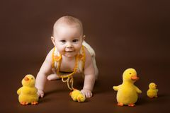 Little baby boy, playing with decorative ducks, isolated on brow. N background, easter fun royalty free stock image