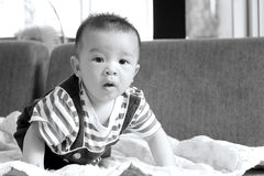 Little baby boy,portrait of adorable curious smile baby boy clos Royalty Free Stock Photos