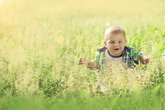 Little baby boy sitting summer outdoors grass in sun. And enjoy the warmth and laughs stock images
