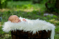 Little baby boy, sleeping in basket with white fur. Outdoor Royalty Free Stock Photography