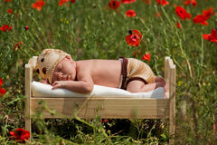 Little baby boy, sleeping in a little bed in a pop. Py field in the summer Royalty Free Stock Photography