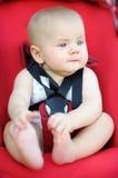 Little baby boy Stock Photography