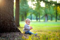Little baby boy at the sunny park Royalty Free Stock Images