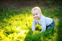 Little baby boy at the sunny park Stock Images