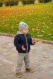 Little baby boy walking away in colorful autumn park Royalty Free Stock Image