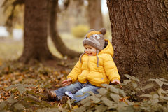 Little baby boy in yellow jacket smiles in autumn, sitting under stock photography