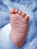 Little Baby Boys Foot Stock Image