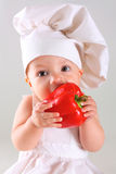 Little baby in a cap chef with Pepper royalty free stock image