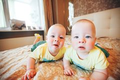 Infant Baby Child Twins Brothers Six Months Old at Home on the Bed. Little Baby Child Twins Brothers Six Months Old at Home on the Bed royalty free stock photo
