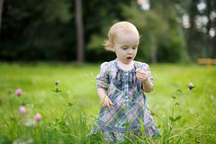 Little baby in a clover field. Nice little baby in a clover field Royalty Free Stock Image