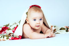 Little baby covered with a blanket on a gray background Stock Photography