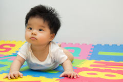 Little baby crawling on floor. Portrait of a little Asian baby girl crawling on floor royalty free stock photography