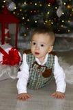 Little baby crawling near Christmas tree.  stock image