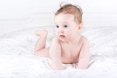 Little baby crawling on a white blanket stock image