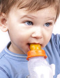 Little baby drinking milk, close up. Over white stock images
