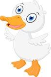 Little baby duck cartoon Stock Photo
