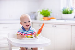 Little baby eating carrot. Happy baby sitting in high chair eating carrot in a white kitchen. Healthy nutrition for kids. Bio carrot as first solid food for stock image