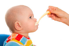 Little baby is feeding curds from spoon Stock Photo