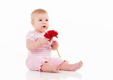 Little baby with flower Royalty Free Stock Photo
