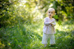 Little baby in a forest holding maples leaves. Little nice baby in a forest holding maples leaves Stock Image