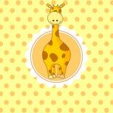 Little baby giraffe Stock Images