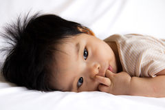 Little baby girl. Portrait of a little Asian baby girl on white background Stock Image