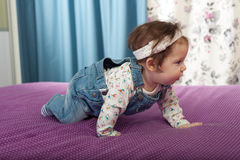 Little baby girl crawling Stock Photos