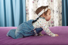 Little baby girl crawling Stock Image