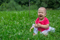 Little baby girl crying bitterly Stock Image