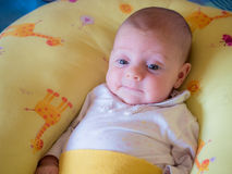 Little baby girl Stock Photo
