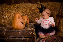 Little baby girl on Halloween party with pumpkin Royalty Free Stock Image