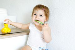 Little baby girl holding toothbrush and brushing first teeth. Toddler learning to clean milk tooth. Prevention, hygiene and healthcare concept. Happy child in stock photography
