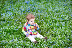 Little baby girl on the lawn between blue flowers Stock Photography