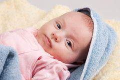 Little Baby Girl Looking Stock Photography