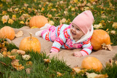 Little baby girl with pumpkins. On the grass Royalty Free Stock Images