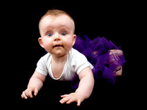 Little baby girl in purple tutu Royalty Free Stock Photo