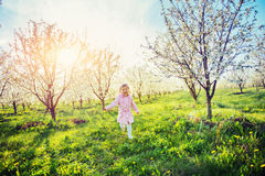 Little baby girl that runs between flowering trees at sunset. Ar Royalty Free Stock Photo