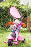 Little baby girl sitting on pink bike Stock Photo