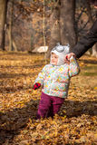 The little baby girl standing in autumn leaves Stock Photos
