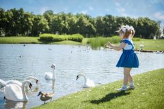 Little baby girl walking in the park near and looking at the swans. royalty free stock images