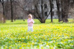 Little baby girl walking among yellow flowers Stock Photos