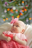 Little baby girl wearing pink crochetting  dress. Little baby girl wearing pink knitting dress and rose adortment  near Christmas tree Stock Photography