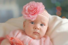 Little baby girl wearing pink knitting dres Royalty Free Stock Photography