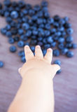 Little baby hand reaches for blueberries Royalty Free Stock Photos