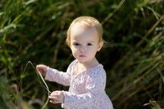 Little baby iin a meadow. Little baby girl in a meadow Stock Photography